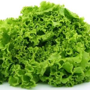 Zelena salata (posno)